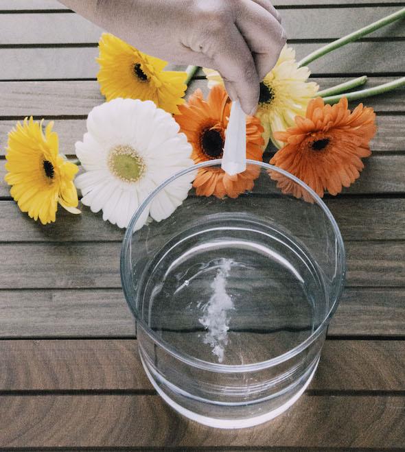 Como mantener tus flores frescas como reci n cortadas - Lejia para los hongos ...